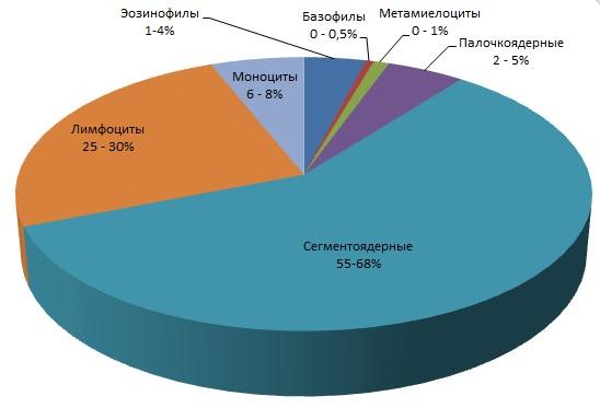 Лейкоцитарная формула норма